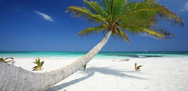 Cancun Volo Hotel